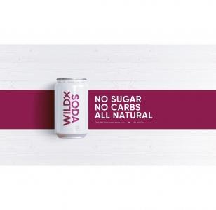 Wild X Soda Vodka x Berry 10 Packs
